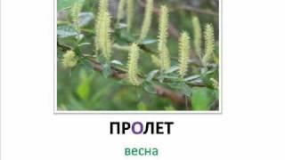 Болгарский язык -- Словарь -- часть 1