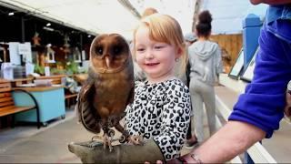 Best the Mum day myowlbarn youre pinned mothers owl card