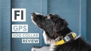 FI DOG COLLAR REVIEW 2021: GPS…