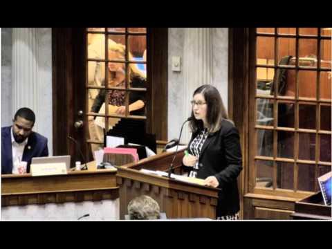 MaryAnn Schlegel Ruegger Parent Testimony Senate Education Committee 021517
