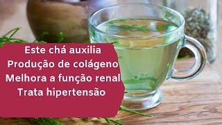 Limpa os Rins, Aumenta o Colágeno e Melhora a pressão – Um chá Multi benéfico para o corpo