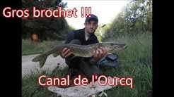 Gros brochet de 98cm pris dans le Canal de l'Ourcq (Mareuil sur Ourcq)