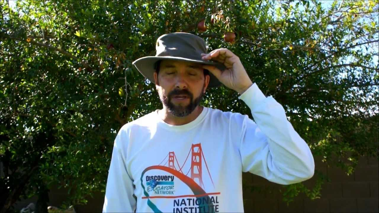 Tim s Take  The Tilley T3 Hat - YouTube 365b5735628