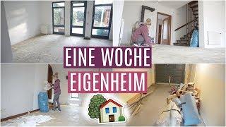 ABENTEUER EIGENHEIM #3 - Update RENOVIERUNG ❘ Tapeten abreißen ❘ MsLavender