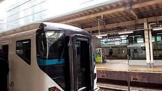 E257系特急踊り子号が東京駅を発車