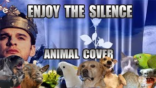 Baixar Depeche Mode - Enjoy The Silence (Animal Cover)