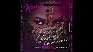 Watch Kandi Used To Love Me feat Todrick Hall  Precious video