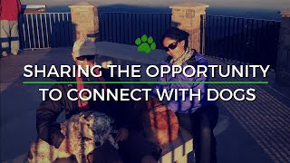 Why We Created Happy Tails Tours & Where We Go!