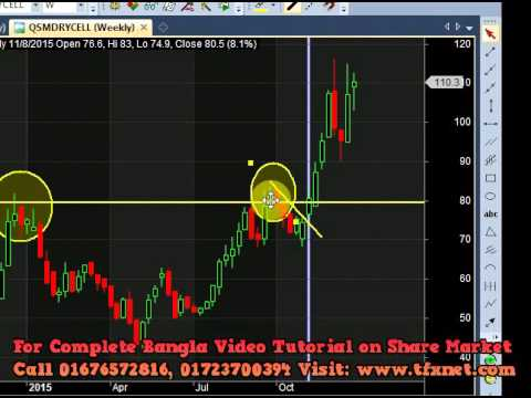 DSE Market Makers Action By Towfick Kamal