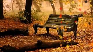 Predrag Živković Tozovac   Jesen u mom sokaku