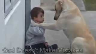 Special Scenes Sweet Mama Dog Interacting with a Beautiful Child with down syndrome
