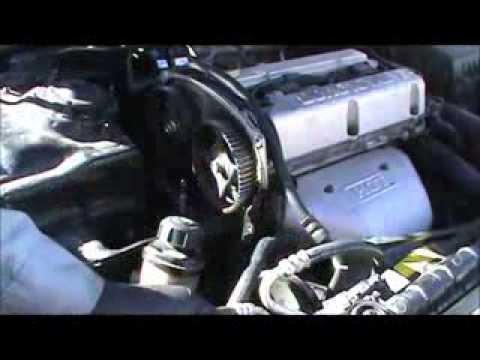 Hyundai Timing Belt