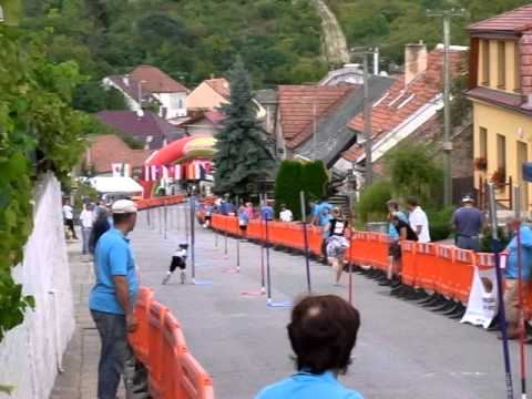 6-years-old girl challenged down hill, WC inline Alpine 2011 at Nemcichy