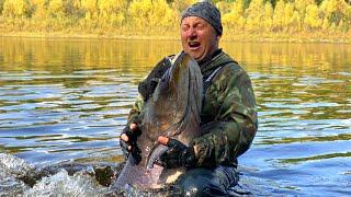 Дикие таймени Станового хребта Якутия Wild Hucho Taimen Of Yakutia