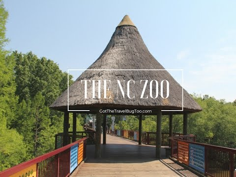 OUR VISIT TO THE NORTH CAROLINA ZOO