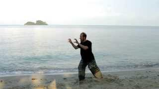White Tiger Qi Gong to Let Go