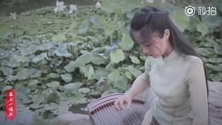 【 Guzheng】Tình Yêu Khó Cầu《一爱难求》 Mp3