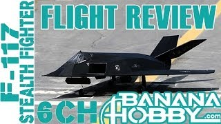 6CH F-117 Stealth Fighter BlitzRCWorks | Flight Review | EDF Fighter Jet