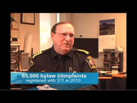Project Calgary: Bylaw complaints