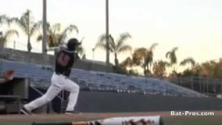 cf5 baseball bats from demarini www batpros com