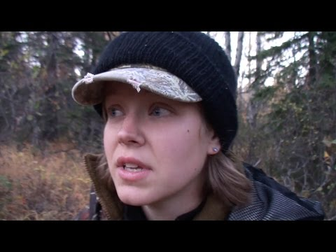 Hunting: Elk And Deer And Bear And Moose