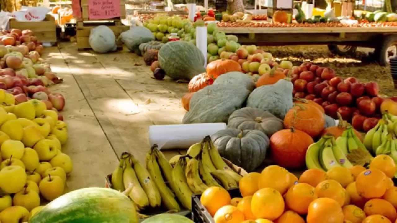 Sustainable Management of Food | US EPA