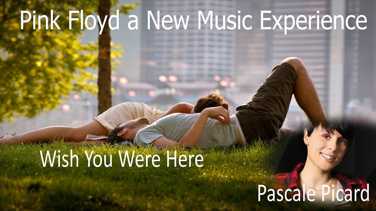 White apron john sokoloff - Pink Floyd A New Music Experience Pascale Picard Wish You Were Here