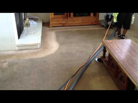 Chem-Dry Carpet Tech Cleaning