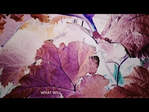 José González - What Will (Lyric Video)
