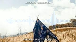 Download Lagu Penting Koe Seneng Opo Wae Tak Lakoni Versi