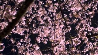 作詞:萩原四朗 作曲:上原賢六 私はセリフだけという初めてのチャレン...