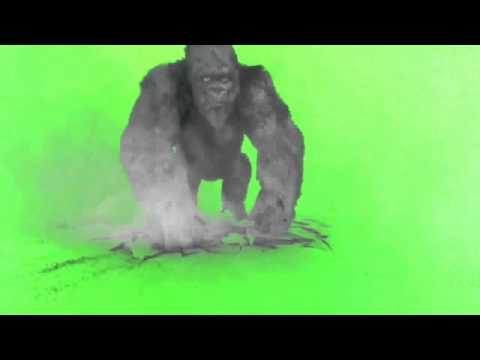 Download Green Screen 40+ essential effects