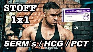 STOFF 1x1: SERM´s/HCG & PCT - Richtig absetzen / Funktion und Herkunft / PCT wirklich nötig?