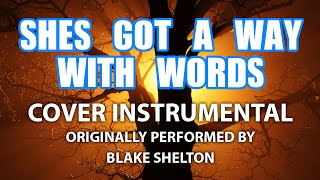 she s got a way with words cover instrumental in the style of blake shelton