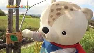 あさっぴーの観光散歩 「あさひかわ北彩都ガーデン」編 (2014年9月13日放送)