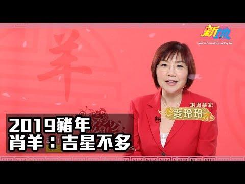 麥玲玲2019豬年生肖運程-肖羊篇
