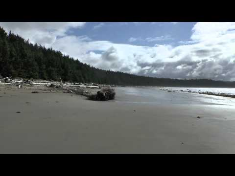 Ozette Lake-Cape Alava-Sand Point Loop @ Olympic NP, WA 032115