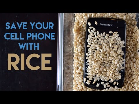 How To Save Your Water Damaged Cell Phone With Rice