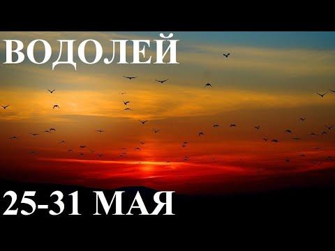 ВОДОЛЕЙ 25-31 МАЯ ТАРО ГОРОСКОП ОТ ЛИС ФИЗАЛИС