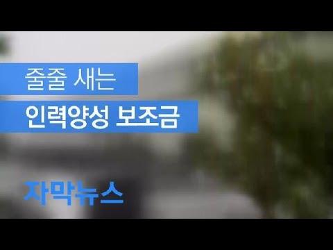 [자막뉴스] 취준생 위한 수천만 원 보조금의 민낯 / KBS뉴스(News)