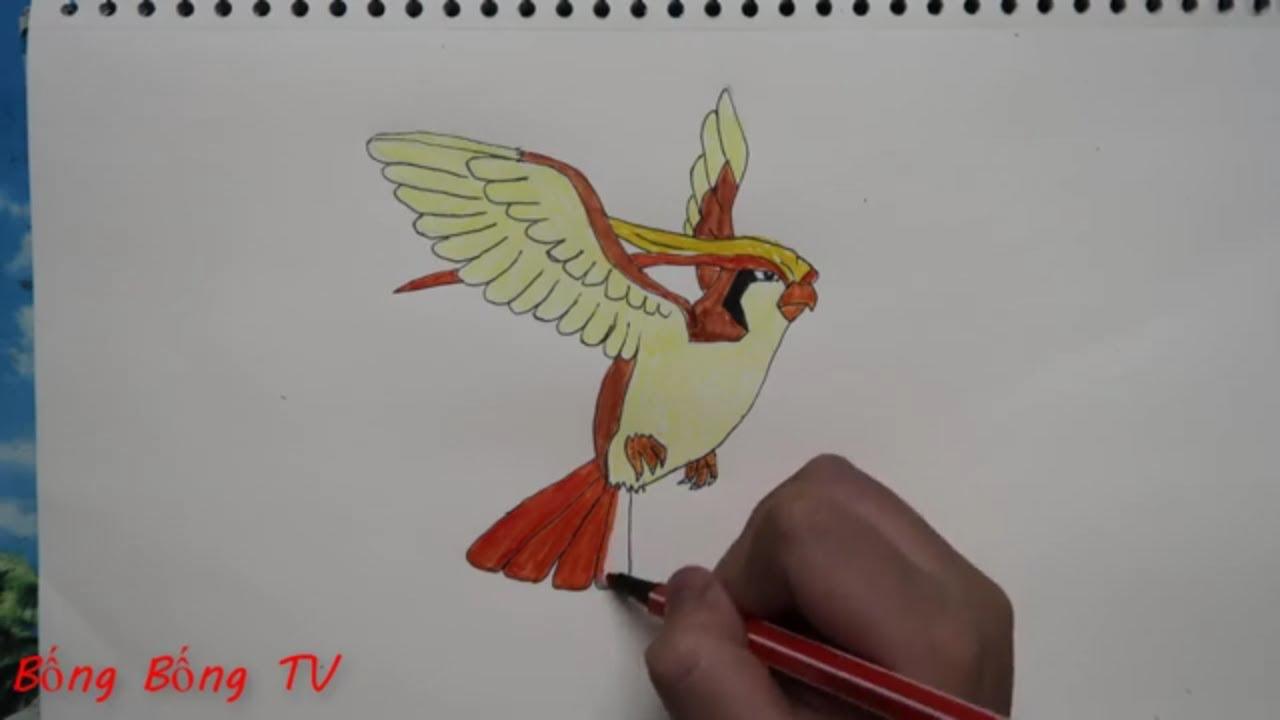 Bống Bống TV – cách  vẽ và tô màu Pokemon Pigeot