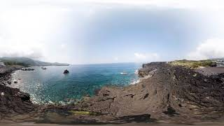 TAMA & SHIMA 360° VR ANIMAL VIEW_Izu Islands Trush