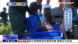 學霸最「蝦」養殖術 洄游農村更新產業《海峽拚經濟》