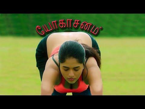 Sunaina Yoga - Sugamana Yoga with Swamiji - சுவாமிஜியின் சுகமான யோகா - சுனைனாவின் யோகா thumbnail