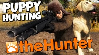 The Hunter - Hunting Dog - Puppy Labrador Retriever