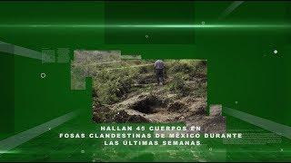 Hallan 45 cuerpos en fosas clandestinas de Mexico durante las últimas semanas