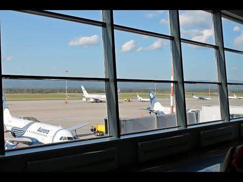 Международный аэропорт Кневичи, г.  Владивосток.  Обзор  от 30 сентября 2017 г.