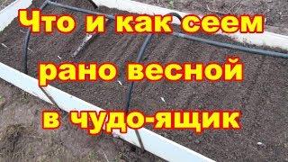 видео Смешанные посевы | Усадьба на Flowtime.ru