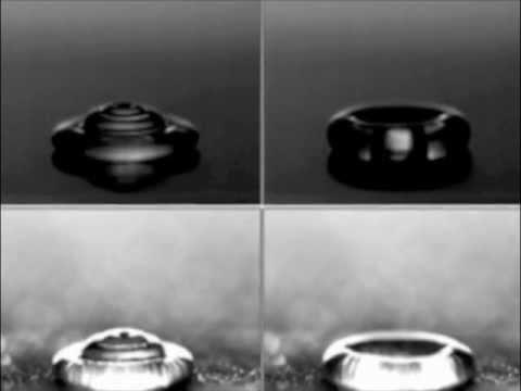 Superhydrophobic Carbon Nanotube Array