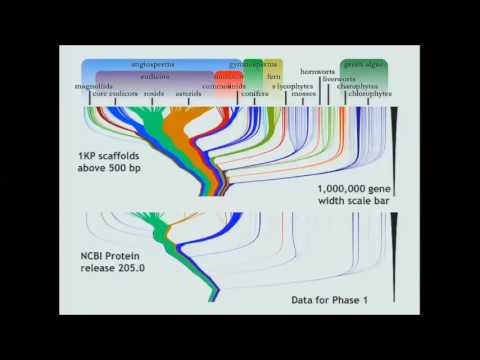 ICBO2016: Plant Phenomes to Genomes: Integrating the Gene Ontology with the Plant Ontology